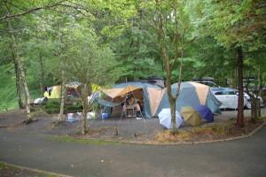 campsite (5)